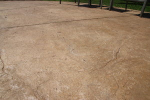 Concrete Stamped Decking